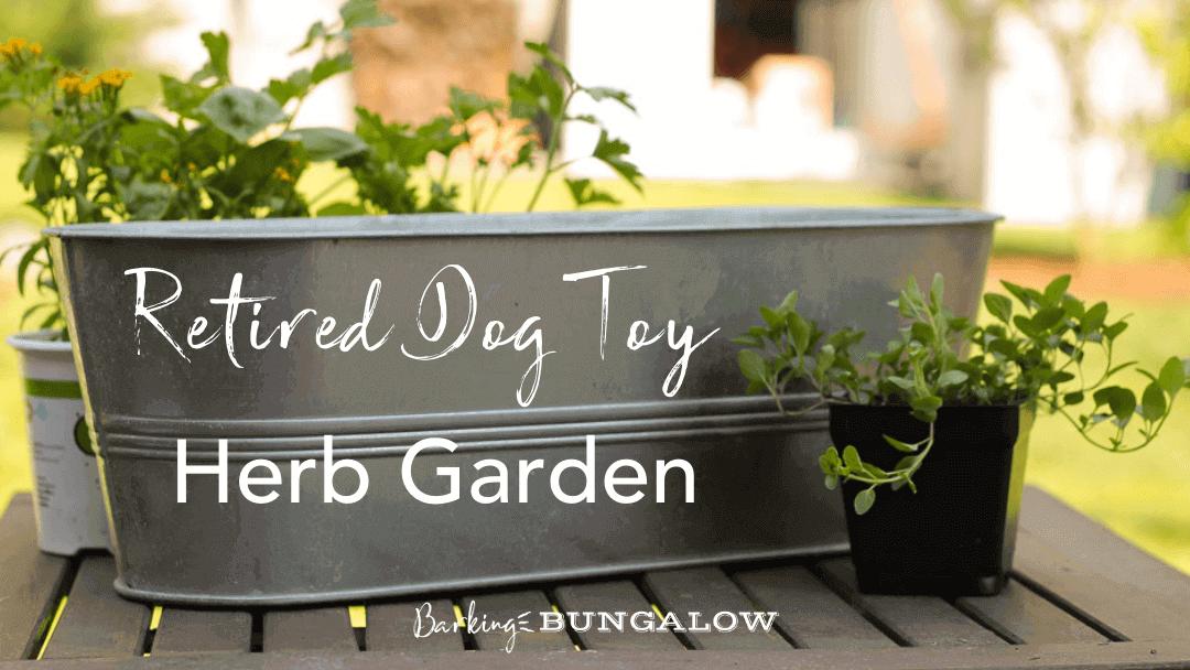 Retired Dog-Toy Herb Garden
