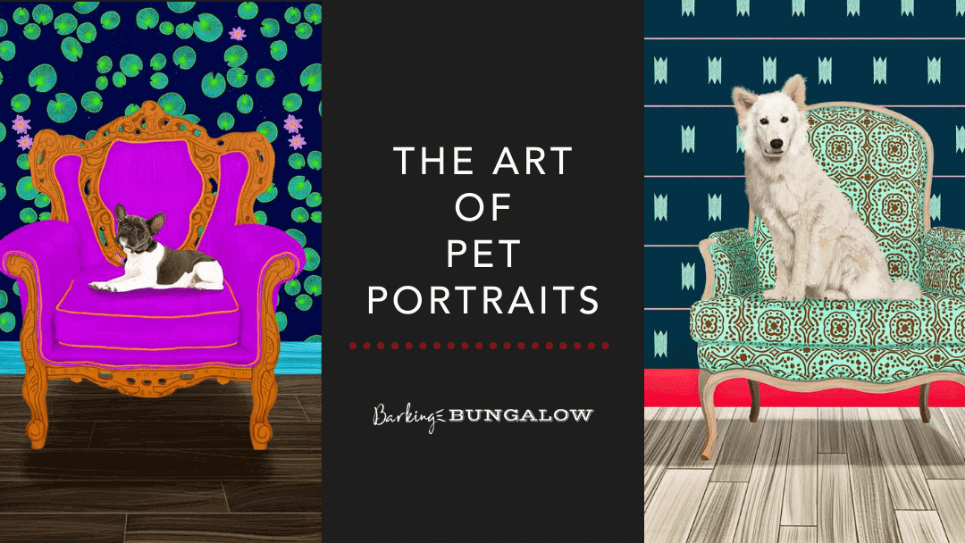 The Art of Pet Portraits
