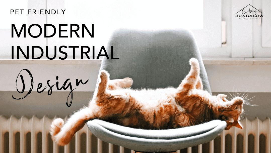 Modern Industrial: Pet-Friendly Design Guide