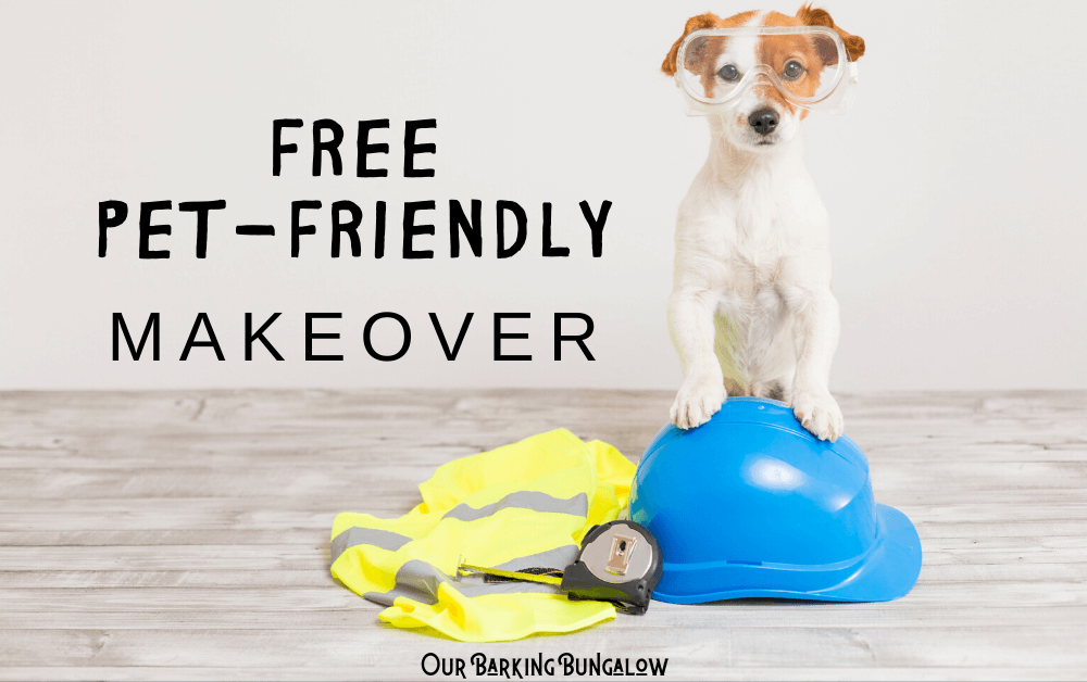 Want A Free Pet-Friendly Make-over?