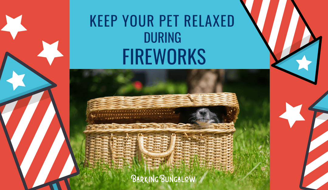 Keep Your Pet Relaxed During Fireworks