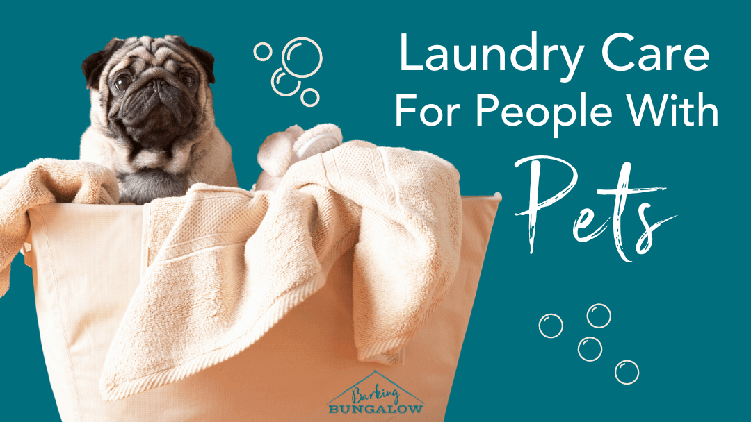 Laundry Care for People with Pets