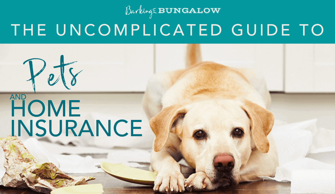 The Uncomplicated guide to pets and home insurance