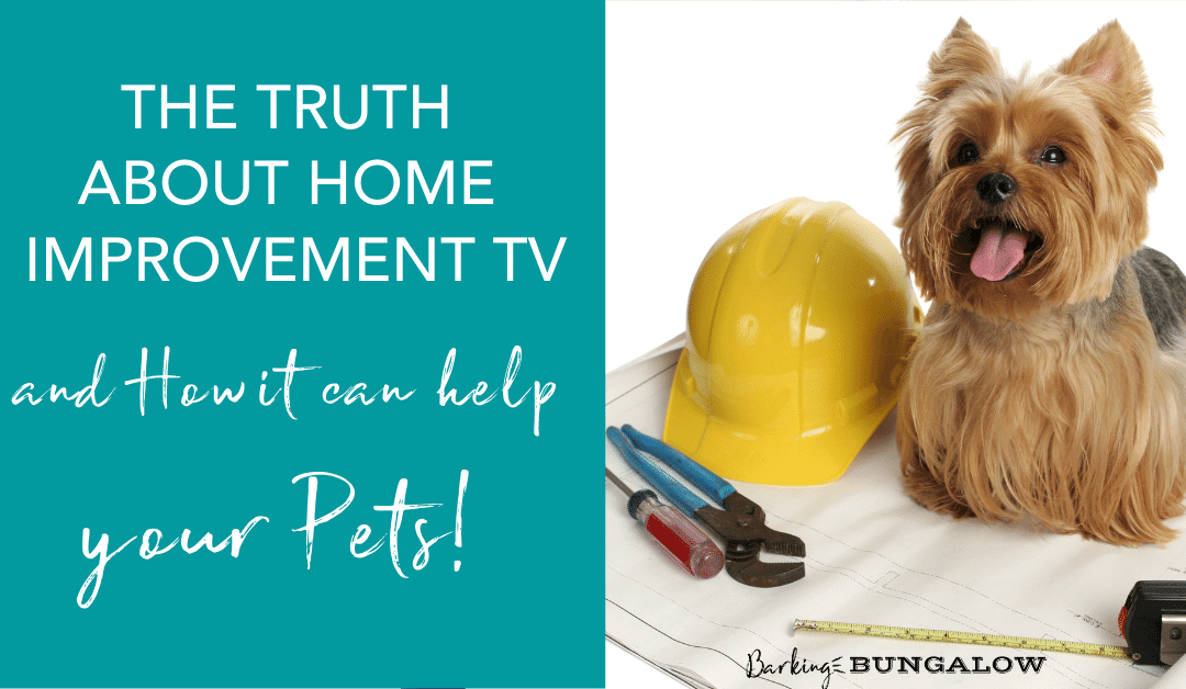 The Truth About Home Improvement TV and How it Can Help Your Pets