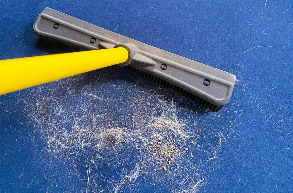 31 Pet Hair Remover Tips