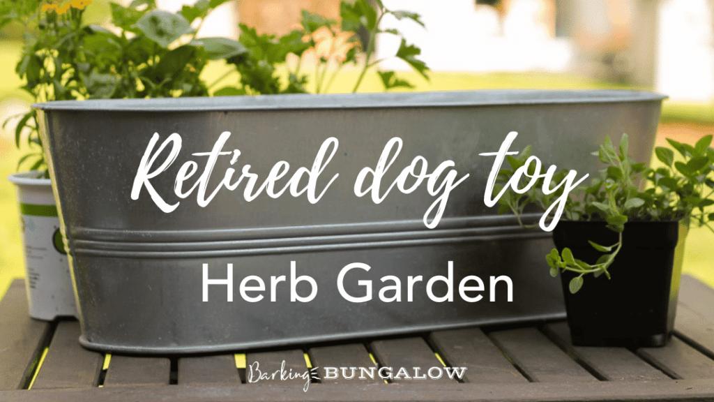 Retired Dog Toy Herb Garden