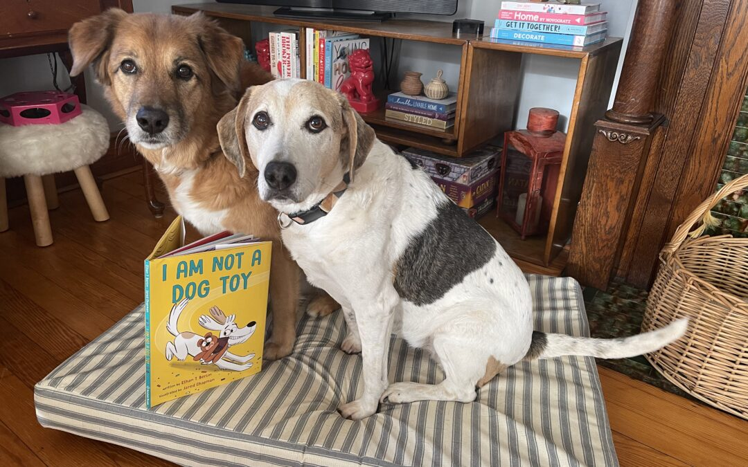 The Must-Have Book for Dog Lovers