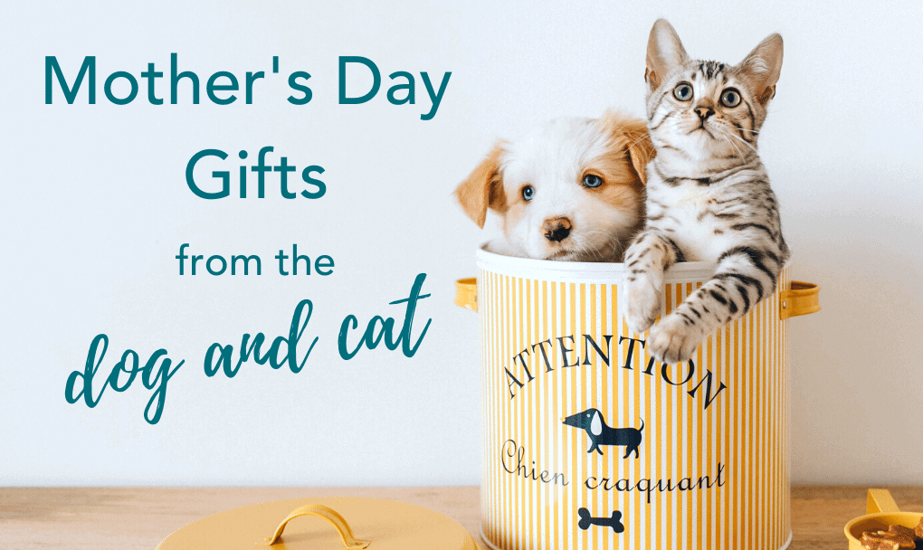 17 Unique Mother's Day Gifts from the Dog and Cat