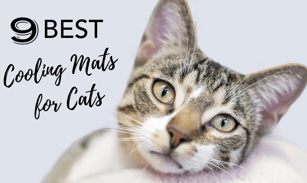 Cooling Mat For Cats